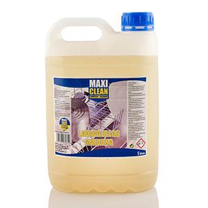 Lavavajillas Máquina Maxi Clean