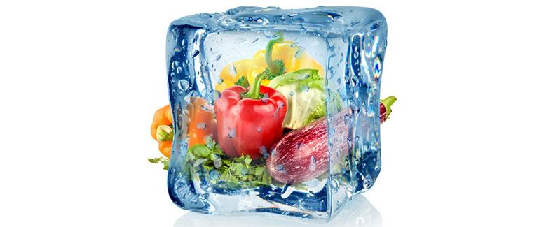 productos congelados al por mayor